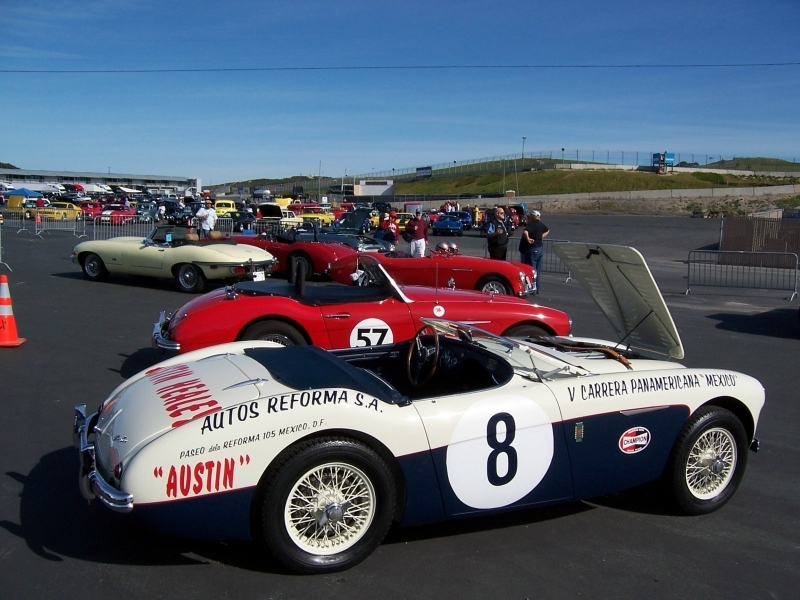 Cool_Healeys_at_Laguna_Seca_50th_Anniversary